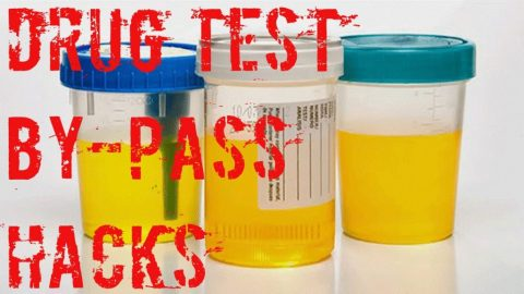 Is it easy to beat the drug test with the help of fake pee?